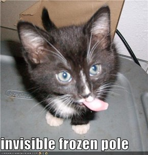 invisible frozen pole