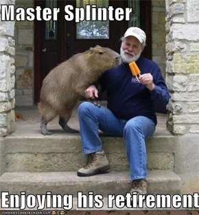 Master Splinter  Enjoying his retirement