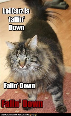 LoLCatz is  fallin'  Down
