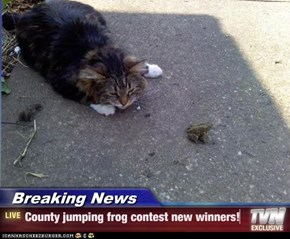 Breaking News - County jumping frog contest new winners!