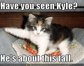 Have you seen Kyle?  He's about this tall.