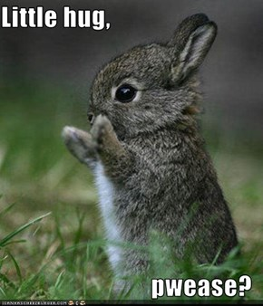 Little hug,   pwease?