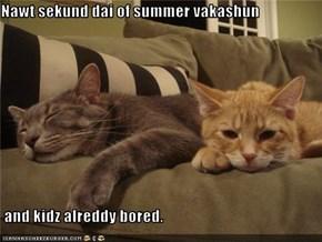 Nawt sekund dai of summer vakashun   and kidz alreddy bored.