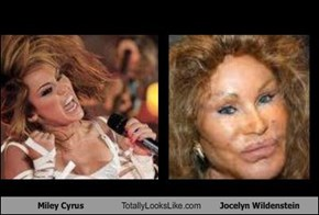Miley Cyrus Totally Looks Like Jocelyn Wildenstein