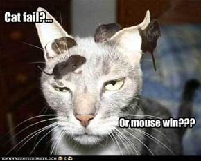 Cat fail?...