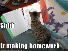 Shhh Iz making homewurk