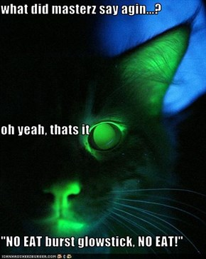 """what did masterz say agin...? oh yeah, thats it """"NO EAT burst glowstick, NO EAT!"""""""