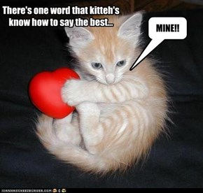 There's one word that kitteh's know how to say the best...