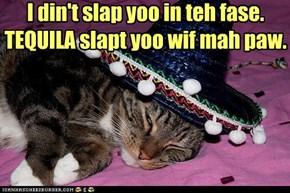 I din't slap yoo in teh fase. TEQUILA slapt yoo wif mah paw.