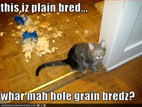 this iz plain bred...  whar mah hole grain bredz?