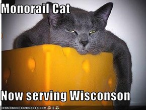 Monorail Cat  Now serving Wisconson