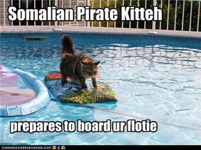 Somalian Pirate Kitteh