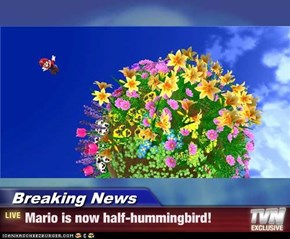 Breaking News - Mario is now half-hummingbird!