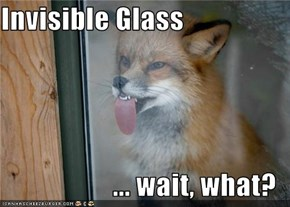 Invisible Glass  ... wait, what?