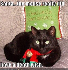 Santa...the mouse really did  have a death wish.