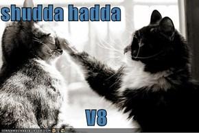 shudda hadda  V8