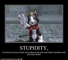 STUPIDITY,