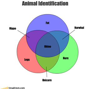 Legs Horn Animal Identification Fat Unicorn Narwhal Hippo Rhino