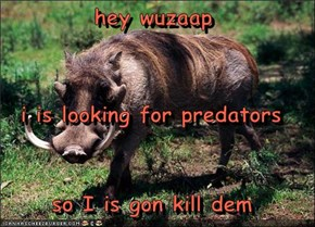 hey wuzaap i is looking for predators so I is gon kill dem