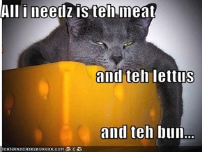 All i needz is teh meat and teh lettus and teh bun...