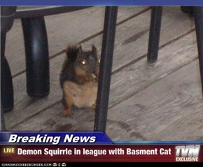 Breaking News - Demon Squirrle in league with Basment Cat
