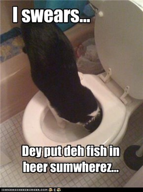 Darn! Deh tuk dinner!