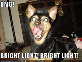 OMG!  BRIGHT LIGHT! BRIGHT LIGHT!