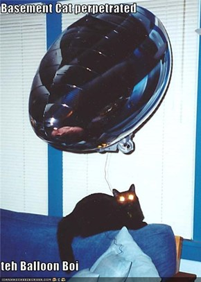 Basement Cat perpetrated  teh Balloon Boi