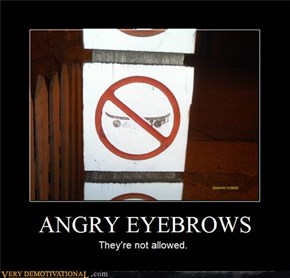 ANGRY EYEBROWS