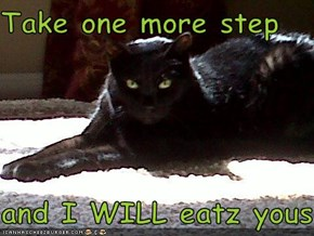 Take one more step  and I WILL eatz yous