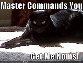 Master Commands You  Get Me Noms!