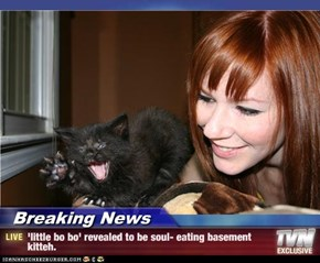 Breaking News - 'little bo bo' revealed to be soul- eating basement kitteh.