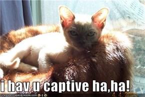 i hav u captive ha,ha!