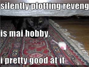 silently plotting reveng is mai hobby. i pretty good at it