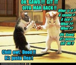 OH,  GAWD !!!  GIT  IT  OFFA  MAH  BACK !!