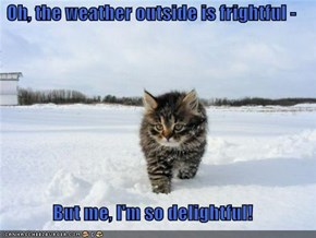 Oh, the weather outside is frightful -   But me, I'm so delightful!