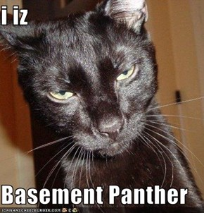 i iz   Basement Panther