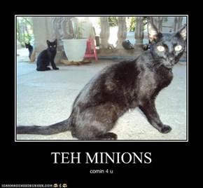 TEH MINIONS