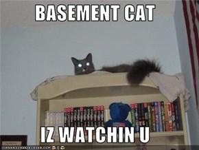 BASEMENT CAT  IZ WATCHIN U