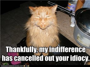 Thankfully, my indifference has cancelled out your idiocy.