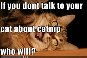 If you dont talk to your  cat about catnip who will?