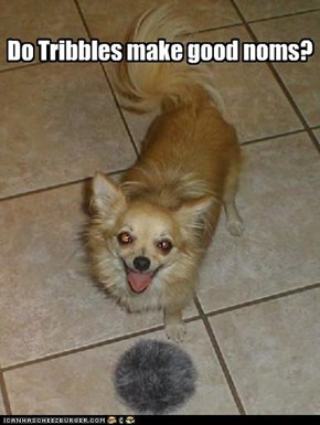 Do Tribbles make good noms?