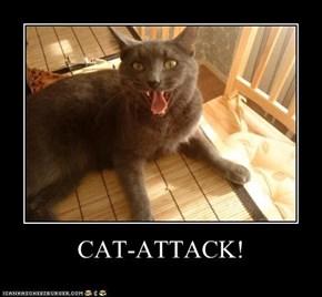 CAT-ATTACK!