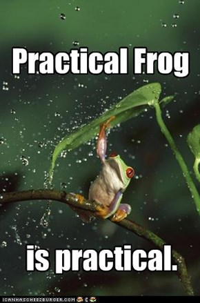 Practical Frog