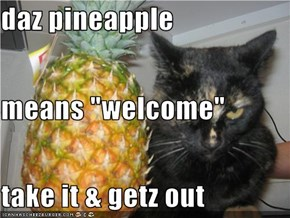 "daz pineapple  means ""welcome"" take it & getz out"