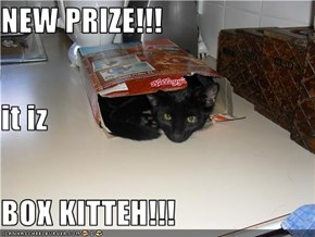 NEW PRIZE!!! it iz BOX KITTEH!!!