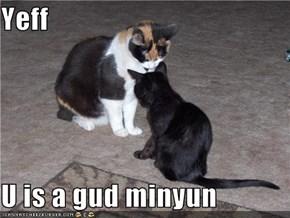 Yeff  U is a gud minyun