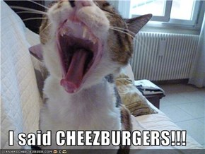 I said CHEEZBURGERS!!!