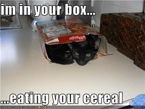 im in your box...  ...eating your cereal
