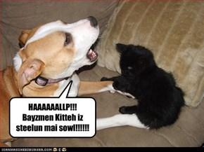 HAAAAAALLP!!! Bayzmen Kitteh iz steelun mai sowl!!!!!!